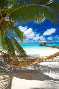 Maldives, Hammock under palmtree overlooking wooden jetty out to tropical sea
