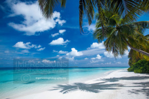 Tropical beach and palm trees, maldives stock photo